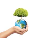 Erde im Menschen die Hand Lizenzfreies Stockfoto