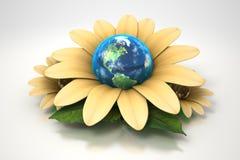 Erde innerhalb der gelben Blume Stockbilder