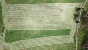 Erde-` s Linie Eine vertikale Perspektive des Brummens der Boden ` s Farben und der Formen Landwirtschaftlicher Rasenflächeschnit stock video footage