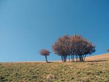 Erde und Himmel stockfotografie