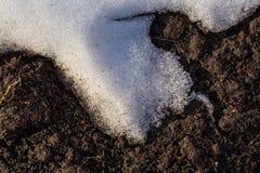 Erde von unterhalb des Schnees Stockfoto