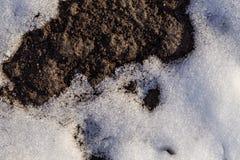 Erde von unterhalb des Schnees Stockbilder