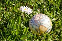 Erdekugel auf Frühlingsgras Stockbilder