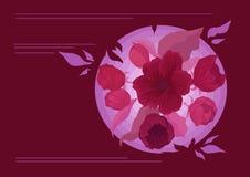 Erdkarte Blume Stockfotos