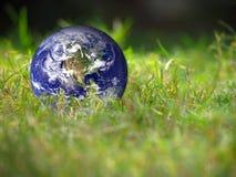 Erdkugel, die auf dem frischen grünen Gras begrifflich liegt Lizenzfreies Stockbild