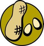 Erdnüsse Lizenzfreie Abbildung