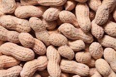 Erdnüsse Lizenzfreies Stockbild
