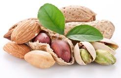 Erdnüsse. Lizenzfreies Stockfoto