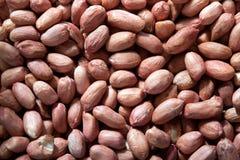 Erdnüsse 2 Lizenzfreie Stockfotos