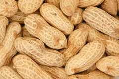 Erdnüsse Stockbilder