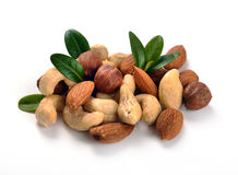 Erdnüsse, Acajoubäume, Mandeln, Walnüsse und Haselnüsse Stockfoto