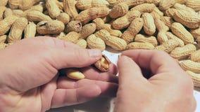 Erdnüsse auf dem Tisch stock video footage
