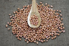 Erdnüsse auf Hanfsäcken Lizenzfreie Stockfotografie