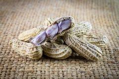 Erdnüsse auf Leinwand Lizenzfreie Stockfotos