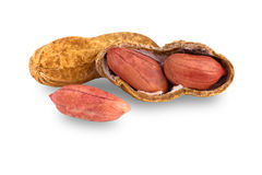 Erdnüsse auf Weiß Stockbild