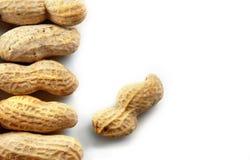 Erdnüsse auf weißem Hintergrund Stockfotos