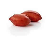 Erdnüsse auf weißem Hintergrund Lizenzfreie Stockfotos