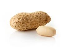Erdnüsse auf weißem Hintergrund Lizenzfreies Stockfoto