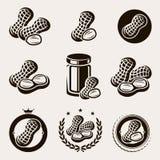 Erdnüsse beschriften und die eingestellten Ikonen Vektor Lizenzfreie Stockbilder