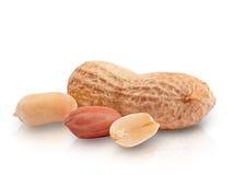 Erdnüsse getrennt auf weißem Hintergrund Stockbild