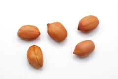 Erdnüsse getrennt auf weißem Hintergrund stockfotografie