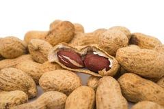 Erdnüsse im Shell lizenzfreie stockfotos