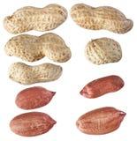 Erdnüsse lokalisieren auf weißem Hintergrund, Nahaufnahme, vom verschiedenen Winkel Stockfotos