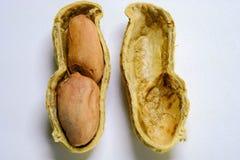 Erdnüsse lokalisiert auf dem weißen Hintergrund Abschluss oben lizenzfreies stockfoto