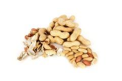 Erdnüsse mit Oberteil auf einem weißen Hintergrund Stockbild