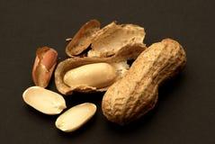 Erdnüsse mit Schalen auf einem schwarzen Hintergrund Stockbilder