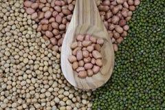 Erdnüsse und Bohnen Stockbild