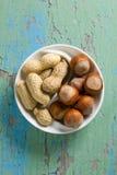 Erdnüsse und Haselnüße Stockbilder