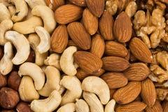 Erdnüsse, Walnüsse, Mandeln, Haselnüsse und Acajounüsse Stockfoto