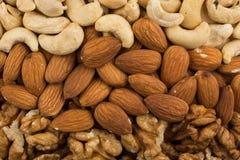 Erdnüsse, Walnüsse, Mandeln, Haselnüsse und Acajounüsse Lizenzfreie Stockfotos