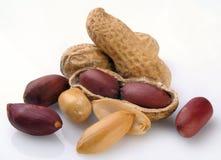 Erdnuss in einem Shell und gelöscht lizenzfreies stockfoto