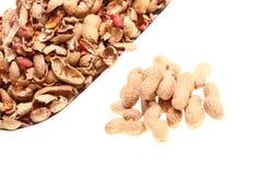 Erdnuss lokalisiert auf weißem Hintergrund Stockfoto