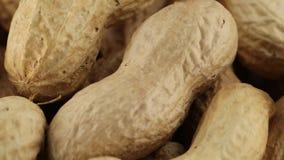 Erdnussbiolebensmittelsnack stock video footage