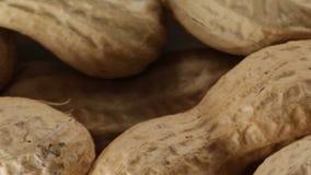 Erdnussbiolebensmittelsnack stock video