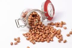 Erdnusskerne Lizenzfreie Stockbilder