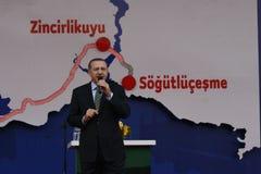 erdogan recep tayyip Στοκ Εικόνα