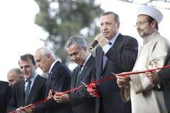 erdogan tayyip recep главного министра Стоковая Фотография RF