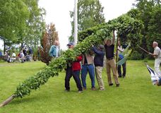 Erecting of the traditional midsummer pole Stock Image