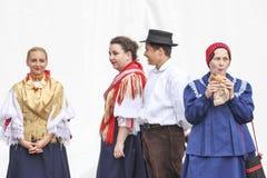 Ereignis des Vinkovci-Herbstes Stockfotos