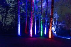 Ereignis Winterlichter im Palmgarden Stockfoto