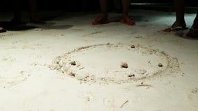 Eremita kraba rasa zbiory wideo
