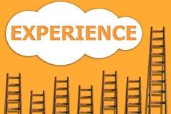 Erfahrung, wordding über Erfolg des Geschäfts Lizenzfreie Stockfotografie