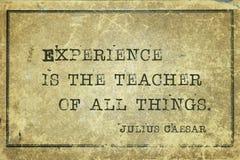 Erfarenhet är läraren Caesar royaltyfri illustrationer