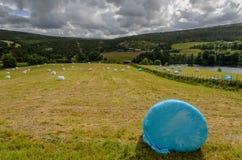 Erfasstes Feld mit Strohballen stockbilder