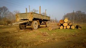 Erfassung der Ernte der Baumstämme auf dem Gras im Dorf nahe bei dem alten Anhänger Stockfotos