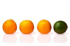 Erfinderisch unter Früchten Stockbild